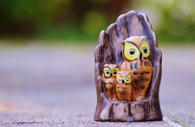 owl-970122_1920